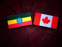 Etiopczyk flaga z kanadyjczyk flaga na drzewnym fiszorku odizolowywającym fotografia royalty free