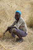 Etiopisk kvinna, Etiopien, Afrika Arkivfoto