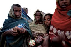 Etiopiska ungar Arkivbilder