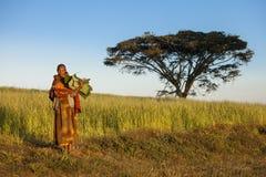 Etiopiskt kvinna- och akaciaträd Arkivbild