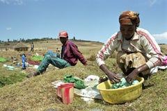 Etiopscy kobiet obmycia odziewają w washtub Zdjęcia Stock
