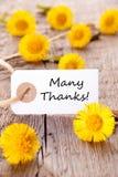Etiqueta com muitos agradecimentos Imagem de Stock Royalty Free
