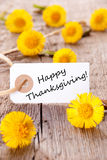Etiqueta con acción de gracias feliz Imagenes de archivo