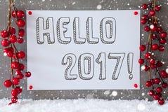 Etiqueta, copos de nieve, decoración de la Navidad, texto hola 2017 Fotos de archivo