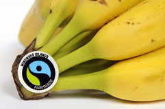 Etiqueta de Fairtrade en un manojo de plátanos maduros Fotos de archivo libres de regalías