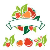 Etiqueta de la fruta y verdura imágenes de archivo libres de regalías