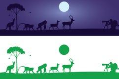 Etiqueta de la pared de los animales ilustración del vector