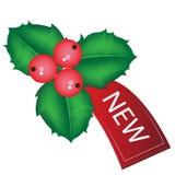 Etiqueta de la venta de la Navidad con el muérdago Fotos de archivo libres de regalías
