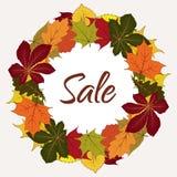 Etiqueta de la venta del otoño, marco del círculo con las hojas amarillas ilustración del vector