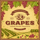 Etiqueta de las uvas del vintage stock de ilustración