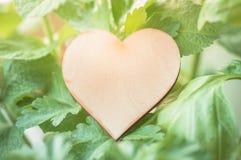 Etiqueta de madera del corazón con las diversas hierbas Fotografía de archivo