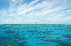 Etiqueta de plástico del filón coralino en el océano Fotos de archivo libres de regalías