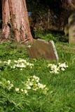 Etiqueta de plástico del sepulcro de la vendimia Fotografía de archivo