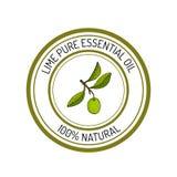 Etiqueta del aceite esencial, planta aromática Fotos de archivo libres de regalías