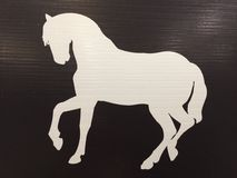 Etiqueta del caballo Fotografía de archivo