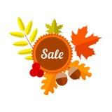 Etiqueta del descuento del otoño con las hojas Imagen de archivo libre de regalías