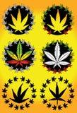 Etiqueta del diseño de la mala hierba de la marijuana del cáñamo Foto de archivo