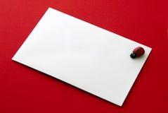 Etiqueta del regalo con el ladybug fotos de archivo libres de regalías