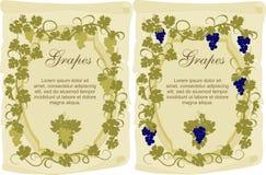 Etiqueta del vector para el vino en estilo del vintage Fotografía de archivo libre de regalías