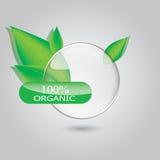 Etiqueta del verde, del eco, bio y orgánica Foto de archivo libre de regalías