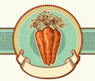 Etiqueta del vintage con las zanahorias. CCB del ejemplo del vector Imagen de archivo libre de regalías