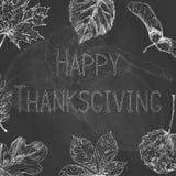 Etiqueta dibujada mano de la acción de gracias con las hojas y el texto en fondo de la pizarra Acción de gracias feliz ilustración del vector