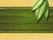 Etiqueta do chá Imagens de Stock