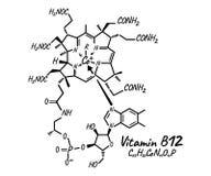 Etiqueta e icono de la vitamina B12 Logotipo de la fórmula química y de la estructura libre illustration