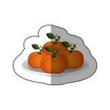 Etiqueta engomada colorida de la fruta de las mandarinas de la colección del sistema Fotografía de archivo