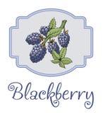 Etiqueta engomada de Blackberry con la rama y las hojas Foto de archivo