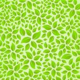 Etiqueta engomada de la tarjeta de la textura del fondo de las hojas de la naturaleza Imagen de archivo libre de regalías