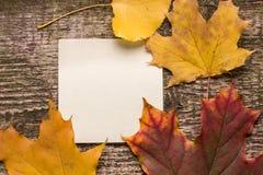 Etiqueta engomada del papel en blanco con las hojas de otoño en viejo fondo de madera Imagen de archivo libre de regalías