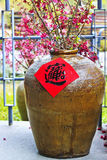 Etiqueta engomada propicia china de la palabra del Año Nuevo Fotografía de archivo