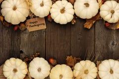 Etiqueta feliz del regalo de la acción de gracias con la frontera doble de las calabazas blancas sobre la madera Imagen de archivo libre de regalías