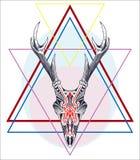 Etiqueta geométrica tirada mão com o crânio dos cervos com os chifres textured fotos de stock