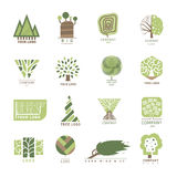 Etiqueta moderna del bosque del roble del árbol del vector del diseño de la insignia de madera del elemento y etiqueta de la natu Imagen de archivo libre de regalías