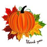 Etiqueta no dia da ação de graças com as folhas de outono do bordo e Imagem de Stock