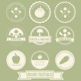 Etiqueta orgánica vegetal de Vintag Imagenes de archivo