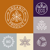 Etiqueta orgánica del producto del vector en esquema Imagen de archivo libre de regalías