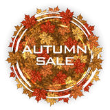 Etiqueta redonda com folhas de bordo do outono Frame do outono Fotografia de Stock Royalty Free