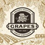 Etiqueta retra de las uvas en paisaje de la cosecha stock de ilustración