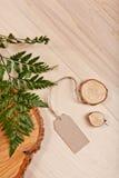Etiqueta vazia no fundo de madeira com samambaia e a árvore reduzida Foto de Stock