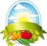 Etiqueta vegetal da natureza ilustração stock