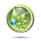 Etiqueta de Eco con la planta y el descenso Foto de archivo libre de regalías