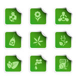 Etiquetas 1 da ecologia Imagem de Stock