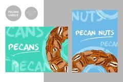 Etiquetas coloridas criativas das porcas de noz-pecã com elementos tirados mão do curso da tipografia e da escova Semicírculo das foto de stock royalty free