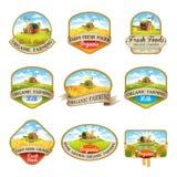 Etiquetas com a imagem de uma exploração agrícola Imagem de Stock
