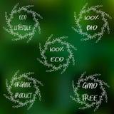 Etiquetas com vegetariano e projetos crus da dieta de alimento Grupo das etiquetas e de elementos do alimento biológico para a re Foto de Stock