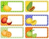 Etiquetas cuadradas con las frutas tropicales libre illustration