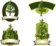 Etiquetas da árvore Fotografia de Stock Royalty Free